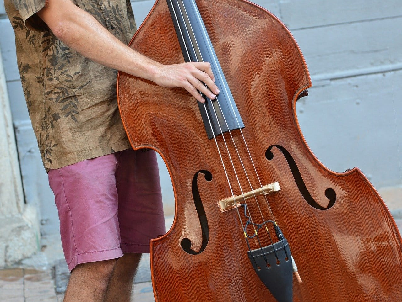 Double bass - 10 hardest instruments to play